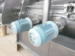 Twin-shaft Dry Mortar Mixer